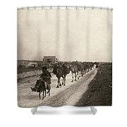 Camel Caravan, C1911 Shower Curtain