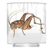 Camel Cricket Shower Curtain