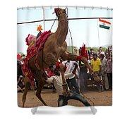 Camel Dance Pushkar Shower Curtain
