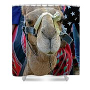 Camel Ride Shower Curtain