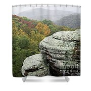 Camel Rock Close Up Shower Curtain by Andrea Silies
