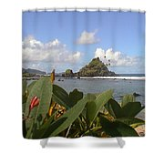 Camelback Island Shower Curtain