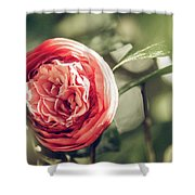 Camellia 3 Shower Curtain