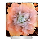 Camellia Bloom Shower Curtain
