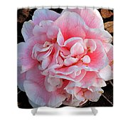 Camellia Flower Shower Curtain