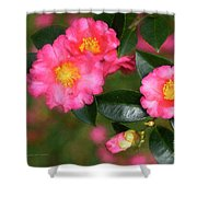 Camellia Pink Shower Curtain
