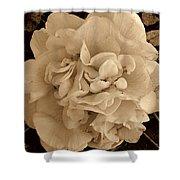 Camellia Sepia Shower Curtain
