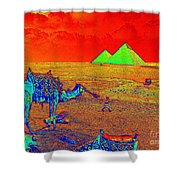 Camels At Giza Shower Curtain