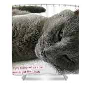 Resting Face Shower Curtain by Debbie Cundy