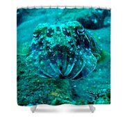 Camo Cuttlefish Shower Curtain
