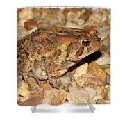 Camouflage Toad Shower Curtain