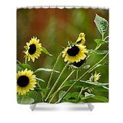 Camouflaged Perch Shower Curtain