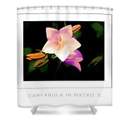 Campanula In Macro 3 Poster Shower Curtain