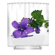 Campanula Shower Curtain