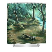 Camping At Figueroa Mountains Shower Curtain