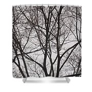 Campus Sky Shower Curtain