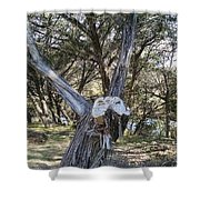 Can You See It? Shower Curtain