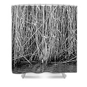 Can You See Me? Shower Curtain