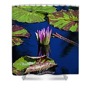 Can You Sit For Awhile Shower Curtain