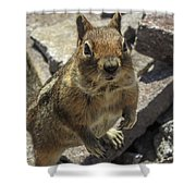 Can You Spare Me Some Food? Shower Curtain