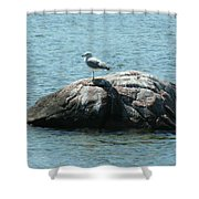 Cana Island Wi Shower Curtain