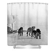 Canada: Dogsledding Shower Curtain