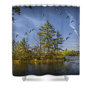 Canada Geese Flying By A Small Island On Hall Lake Shower Curtain