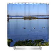 Canada Geese On Yellowstone Lake Shower Curtain
