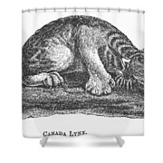 Canada Lynx, 1873 Shower Curtain