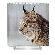 Canada Lynx Up Close Shower Curtain