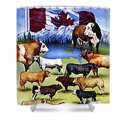 Canadian Beef Breeds Shower Curtain