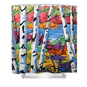Canadian Birches By Prankearts Shower Curtain