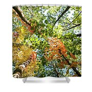 Canadian Foliage Shower Curtain