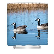 Canadian Geese Couple Shower Curtain