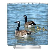 Canadian Geese Family Vacation Shower Curtain