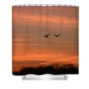Canadian Geese Morning Flight Shower Curtain