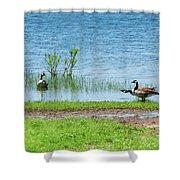 Canadian Geese - Wichita Mountains - Oklahoma Shower Curtain