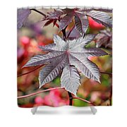 Canadian Leaf Shower Curtain