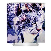 Canadian Lynx 1 Shower Curtain