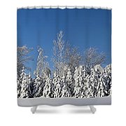 Canadian Winter Panorama Foster Quebec Shower Curtain