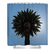 Date Palm Starburst Shower Curtain