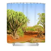candelabra euphorbia tree Euphorbia candelabrum, Kenya Shower Curtain