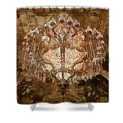 Candil2 Shower Curtain