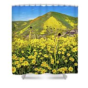 Candle Light In The Temblors - Superbloom 2017  Shower Curtain