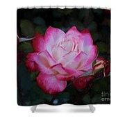 Candy Care Cocktail Floribunda Rose- Digital Art Shower Curtain