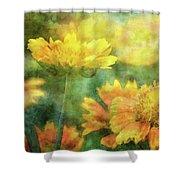 Candy Corn 2770 Idp_2 Shower Curtain
