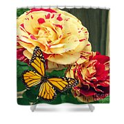 Candy Stripe Rose Shower Curtain