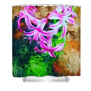 Candy Striped Hyacinth  Shower Curtain