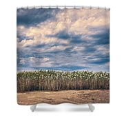 Cane Thicket Shower Curtain