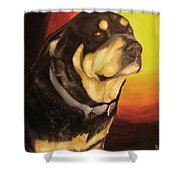 Canine Vision Shower Curtain